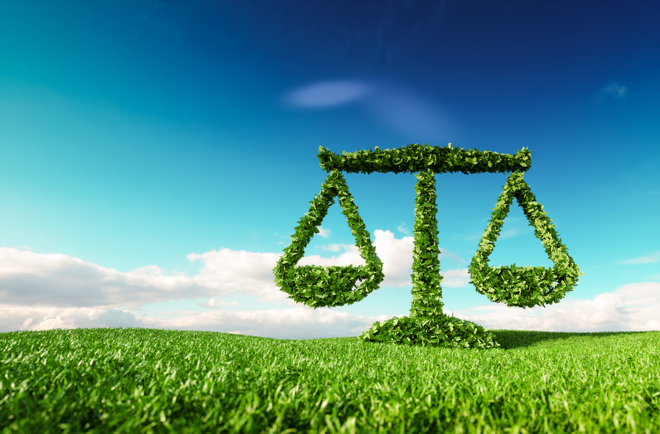 The Best Law Schools For Environmental Law 2020 Above