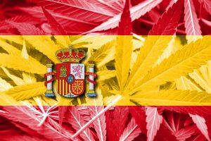 Spain flag cannabis