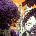 effiel-tower-purple-orange