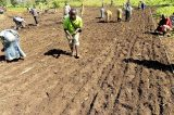 Uganda Farming Classes Transform Refugees Into Entrepreneurs
