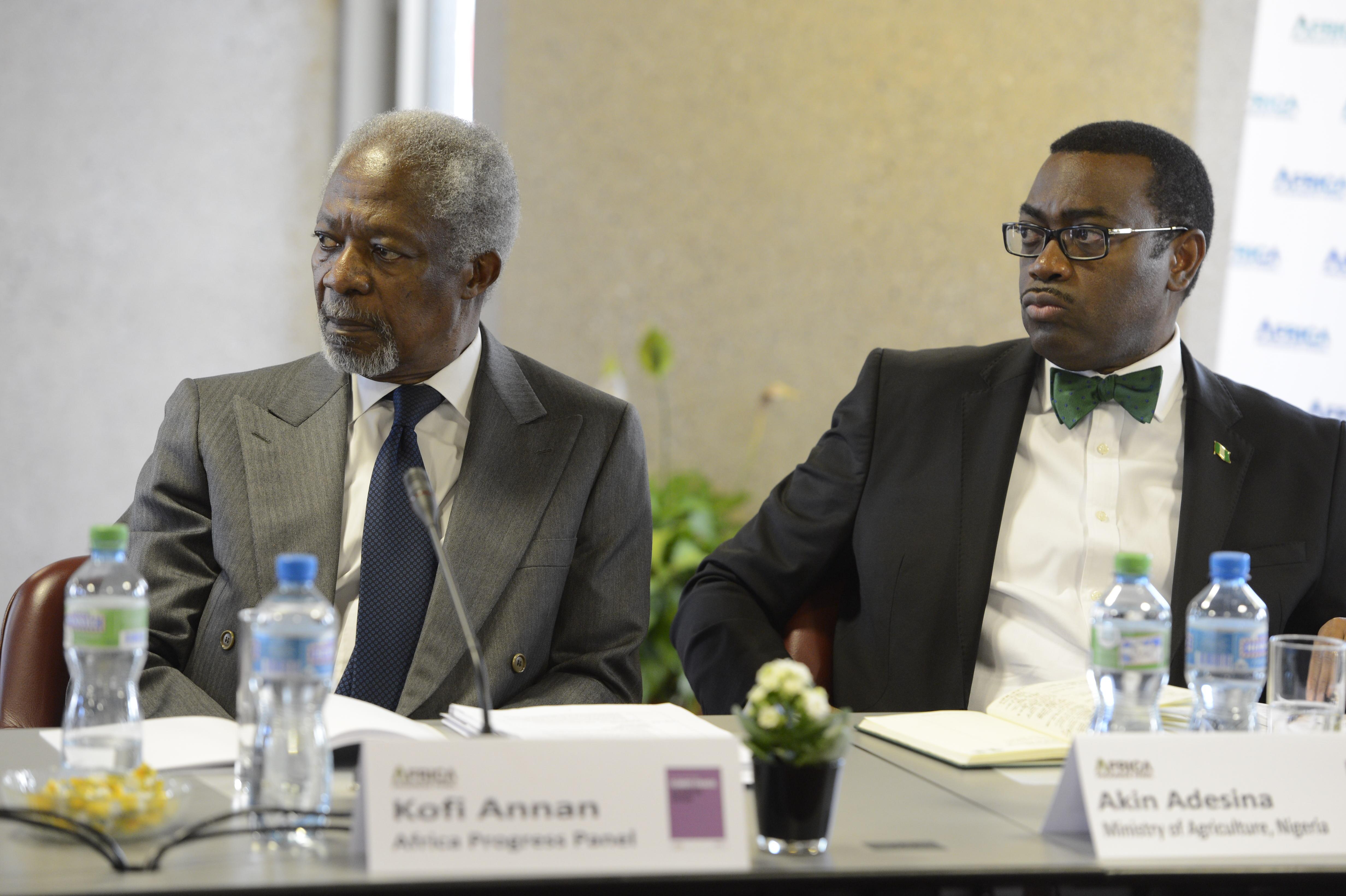 Kofi_Annan_&_Akinwumi_Adesina