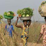 Women zimbabwe
