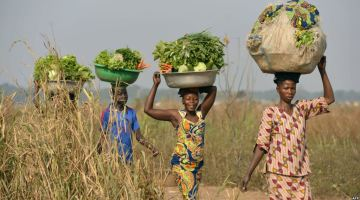 Over 50 000 Women To Be Empowered To Cope With Adverse Effects Of Climate Change In Malawi