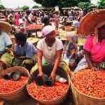 market nigeria
