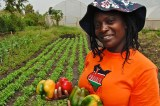 As Tractors Dig To Green The Land, Niger Women Lose Out On Work