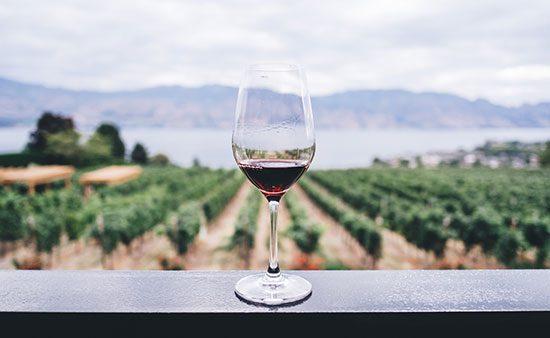 Wine diet