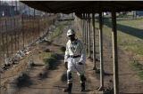 Miner Lonmin Narrows H1 Loss, Trims Spending Target