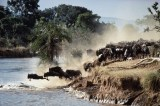 Kenyan Farmers Mix Tradition With Tech To Protect Drying Mara River