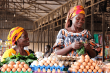 Japan Avails U.S.$4.5 Million To Alleviate Hunger in Female-Headed Households