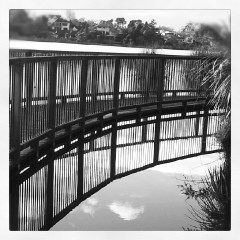 a walkway over the edge of a lake, the reflection of the rails can be seen in the water