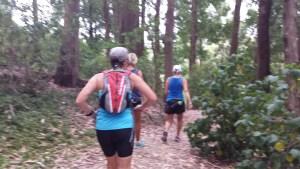 women walking through a forest.