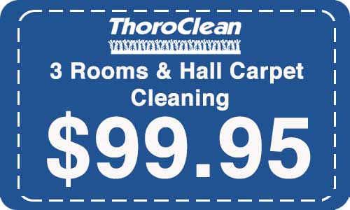 # rooms and a Hall carpet cleaning by Throrclean