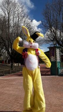 Lapinous' Foufous echassiers rebondissants loufoques parade animation evenementiel lapins fantaisie extravagance sautillants mascottes paques (25)