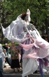 le songe de loeridis echassiers feeriques contes et merveilles spectacle fantastique parade animation elfes fees dragon loup echasses poes (22)