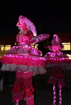 bulles echassiers roses lumineux (2)