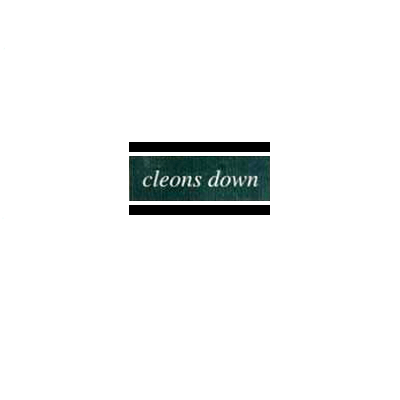 "ECP-001 Cleons Down 7"" (June 1996). Second sleeve"
