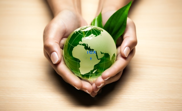 Make Your Business Greener