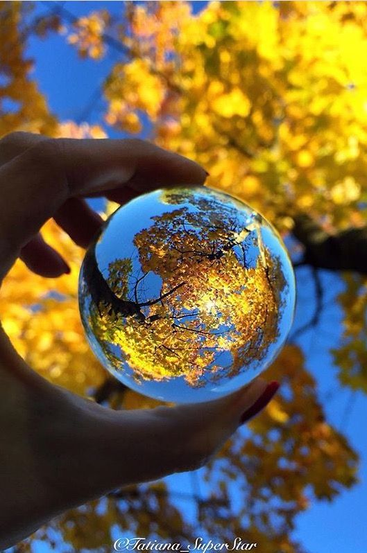 Best Size Crystal Ball for Photography yellow fall