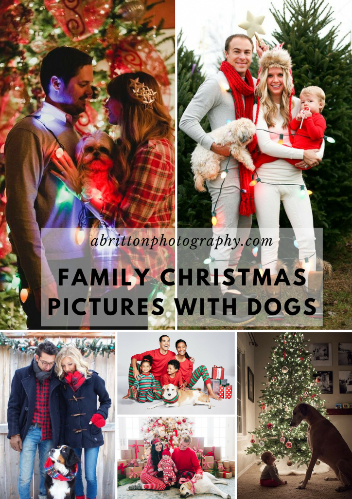 family christmas pictures with dogs