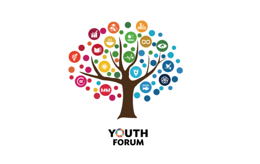 Training course -Non-formal youth work and formal youth studies - Armenia - abroadship.org