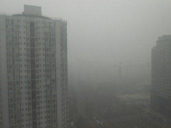 The view out my apartment window at 10 AM.