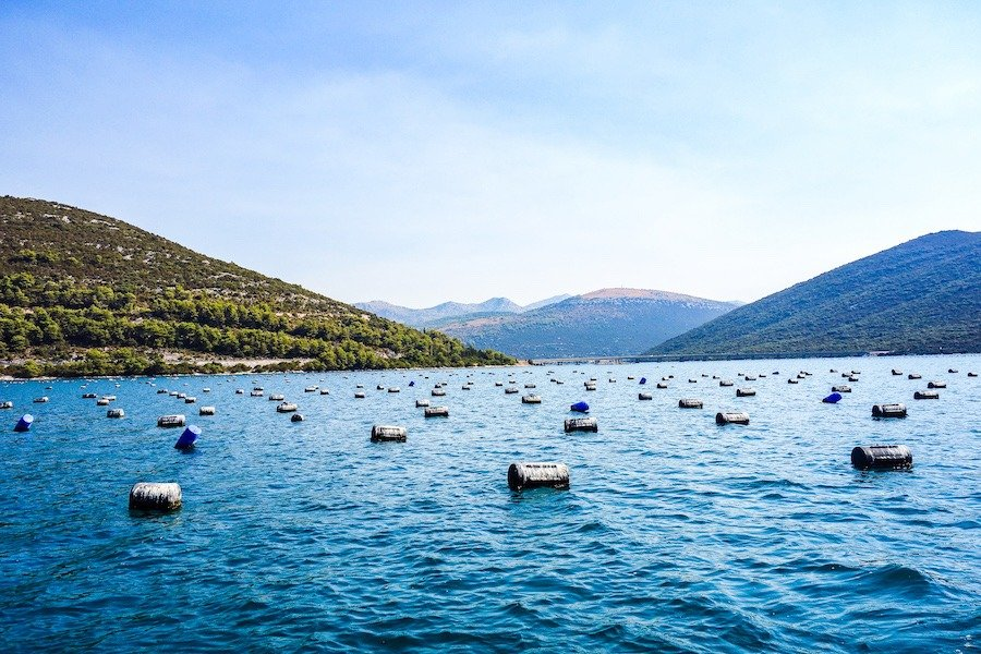 day trips from dubrovnik