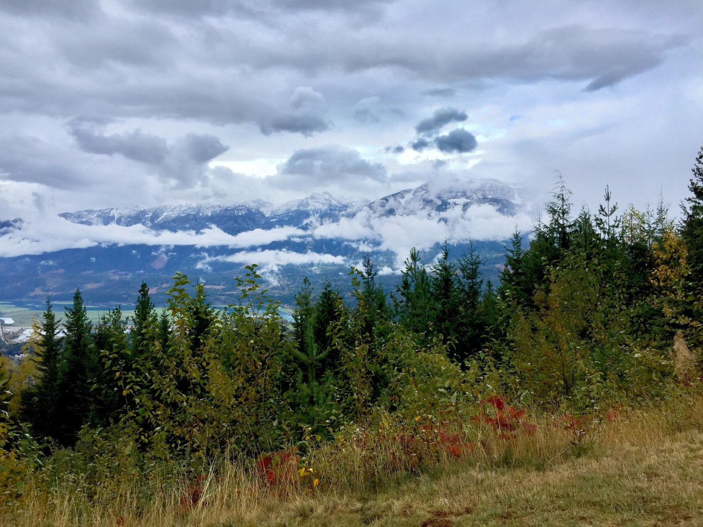 Autumnal colours on the drive up to Mount Revelstoke, overlooking the town of Revelstoke