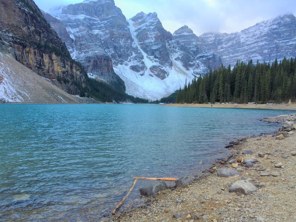 The shores of Moraine Lake