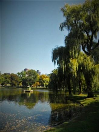 Boston Public Garden.