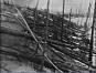 Tunguska, Meteor exlosion 1908