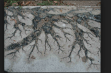 Lightning damage on concrete