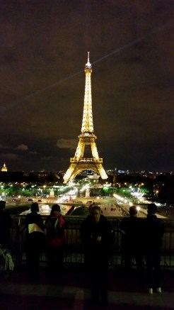 We stopped at the Eiffel Tower on our way home from dinner with friends to watch is sparkle.