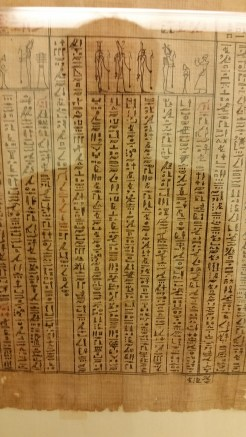 A preserved papyrus (how, I don't know) at the Egyptian Museum, one of the largest collection of Egyptian antiquities in the world.
