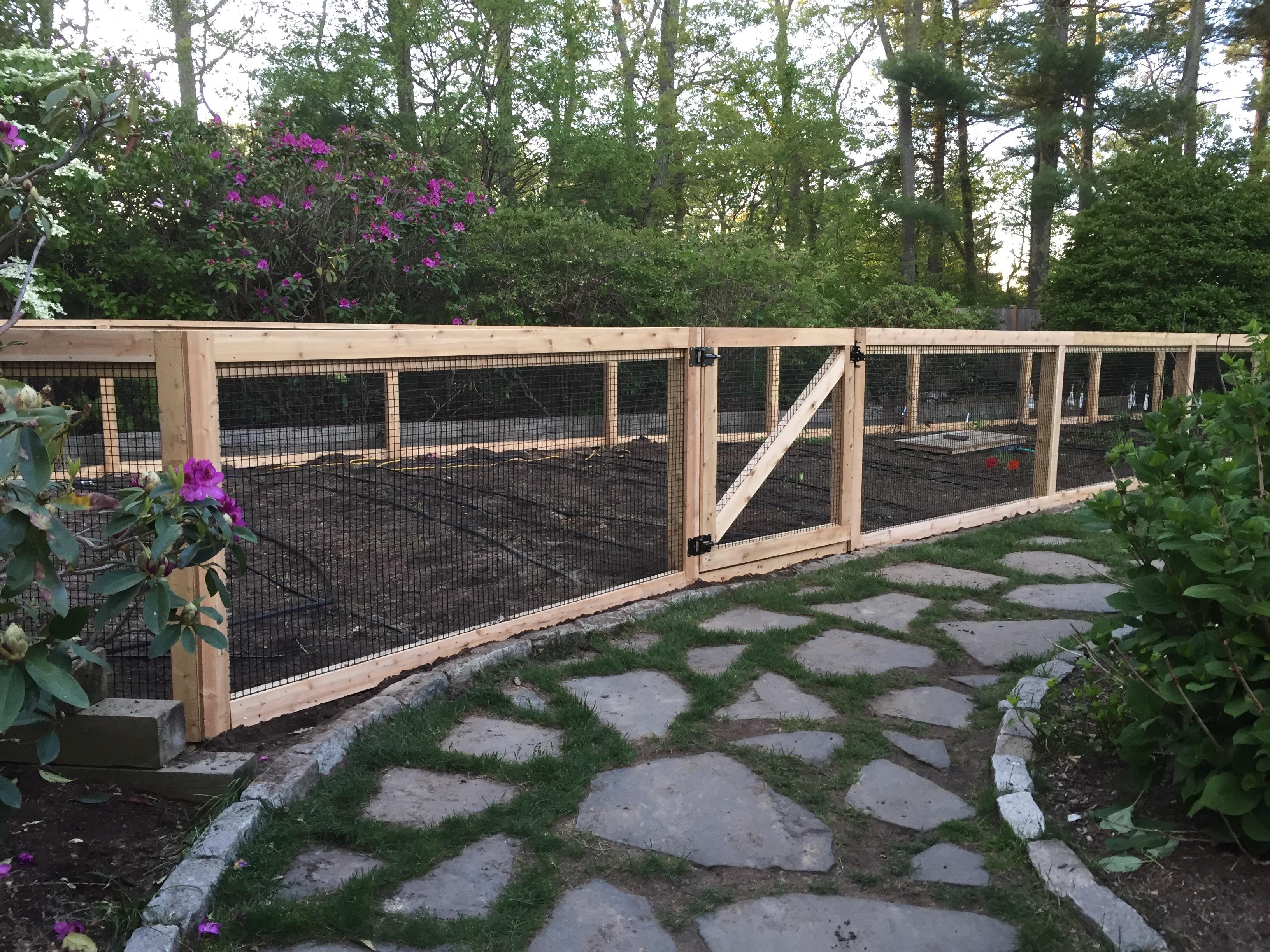Back Garden Fences Responsibility Essay