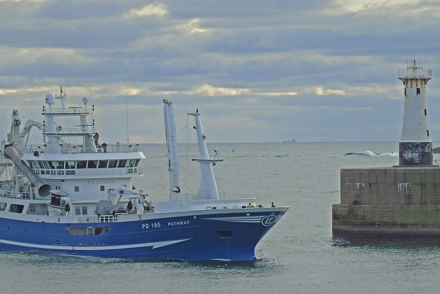 First mackerel of the year landed at Peterhead