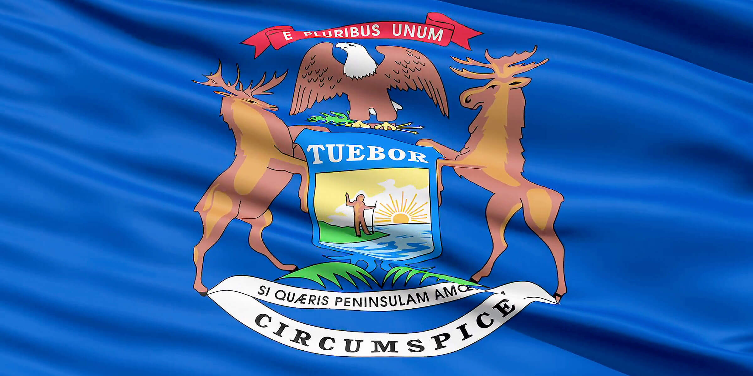 Flag Detail for the US State of Michigan