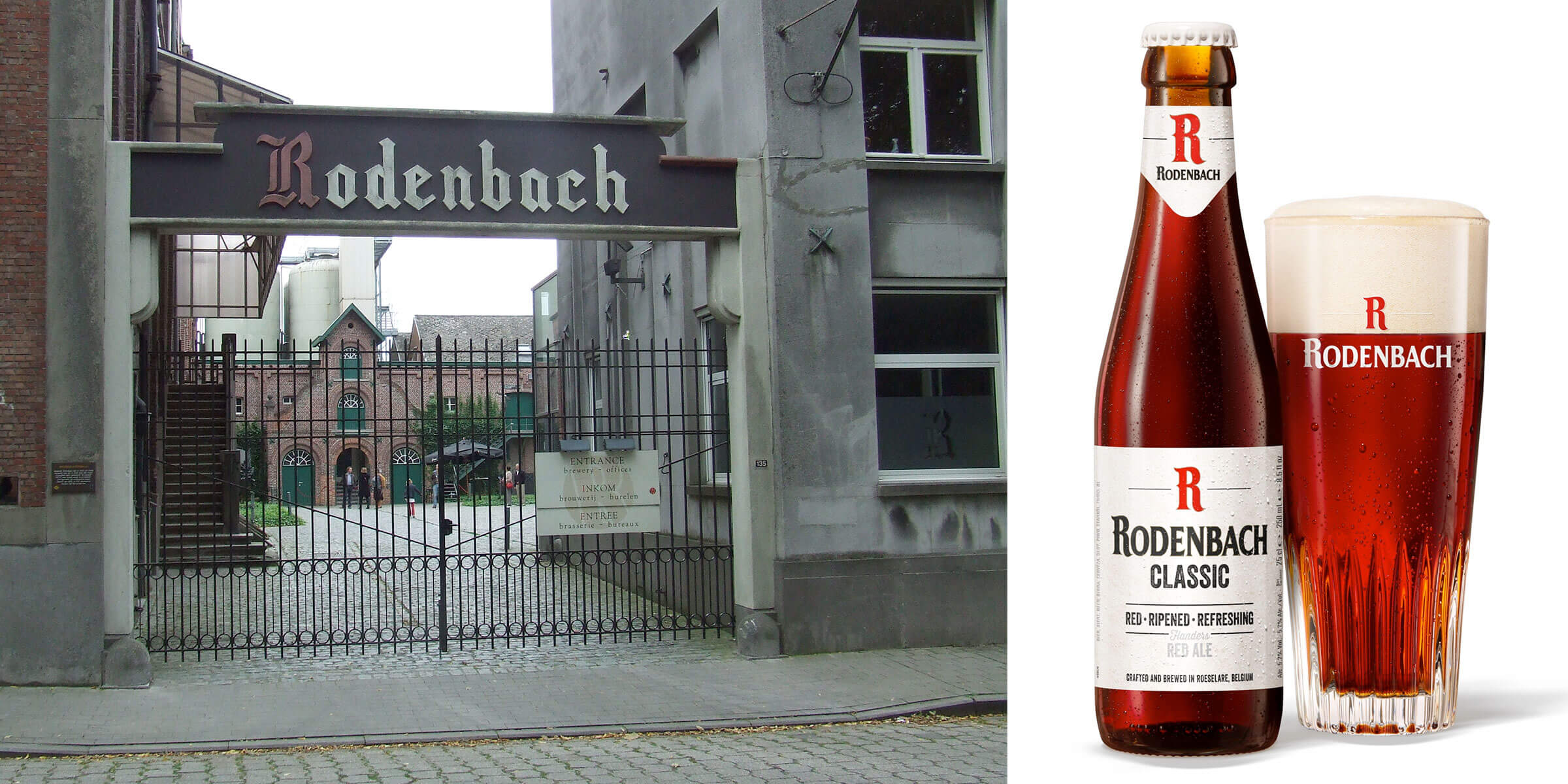 Brouwerij Rodenbach, one of the most revered breweries of sour ales, announced that its original Rodenbach Classic, available in cans throughout the US.