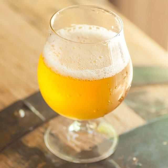 American Wild Ale in a Tulip Glass
