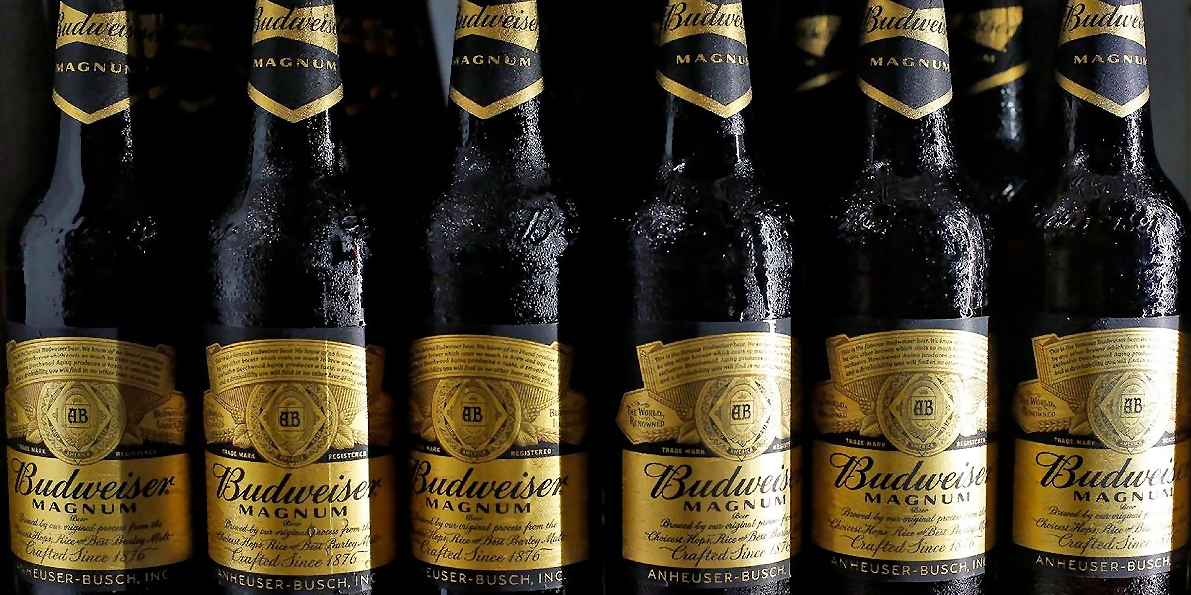 Bottles of Budweiser Magnum that are sold in India. An Indian court dismissed an appeal from Anheuser-Busch InBev against a New Delhi city sales ban, a blow to the world's largest brewer in one a key market.
