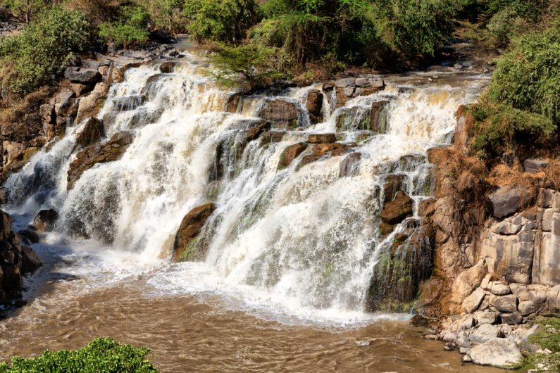 awash national park