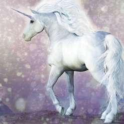 Magical Unicorn Wall Mural, 300 x 280cm