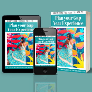 Plan Your Gap Year Experience ebook product image