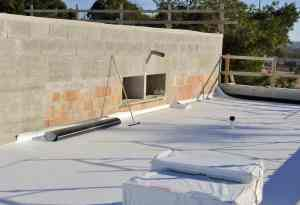 TPO on flat roof