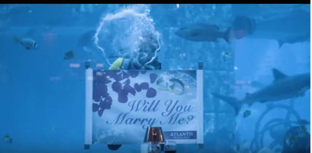 The Wedding Party 2 – Destination Dubai Trailer