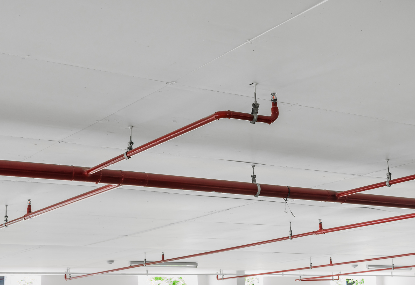 Building Sprinkler Systems Absolute Protective Systems