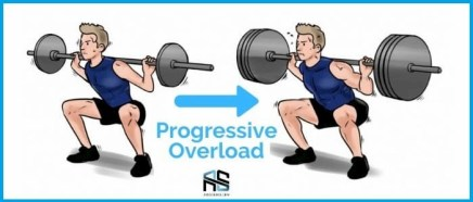 this is the picture of the progressive overload example for creating a workout plan. This is the third principle