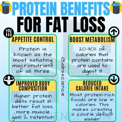 This is the picture of the first priority (calorie deficit) that tells how to lose body fat and the importance of protein