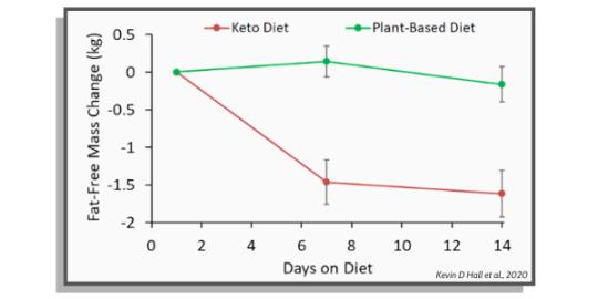 be riebalų masė tarp keto dietos ir augalinės dietos