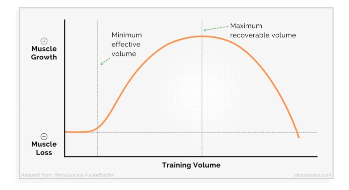 Minimum effective volume (MEV) — the minimum amount of training required to stimulate muscle growth and maximum recoverable volume (MRV) — the amount of training at which no further muscle growth will occur if done consistently