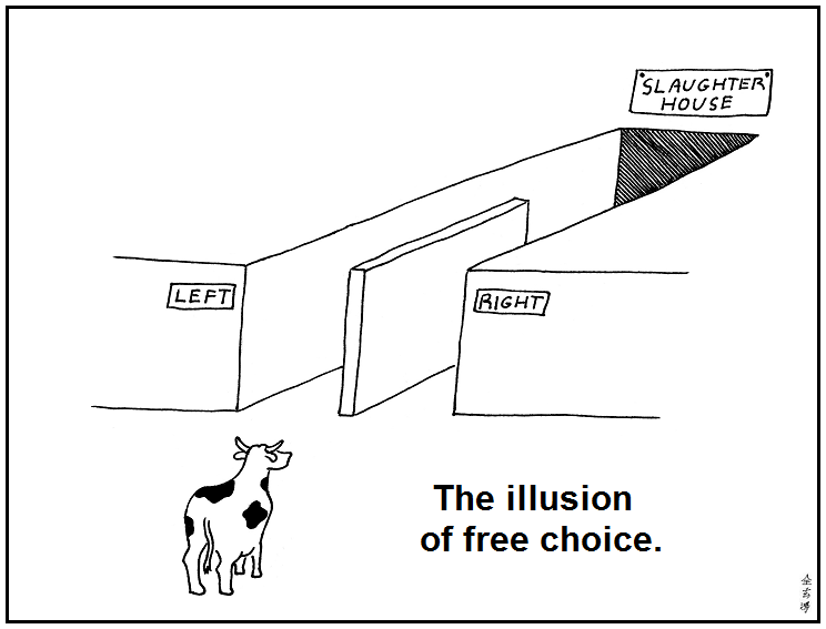 Image result for illusion of choice